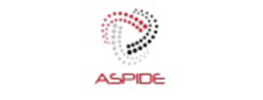 immagine ASPIDE – Exascale programing models for extreme data processing
