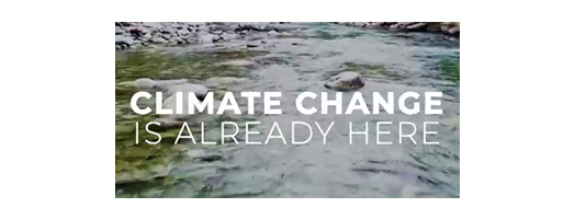immagine Climate Adaptation Strategy