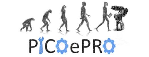 immagine PICOePRO Processi Integrati e COnnessi per l'Evoluzione Industriale nella PROduzione