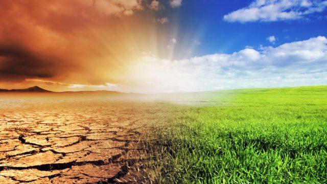 immagine Focus group: Migrazioni e cambiamenti ambientali
