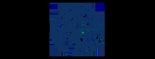 immagine ScienceDIVER – Cross-sectoral skills for the blue economy market
